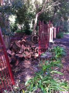 mt evelyn firewood
