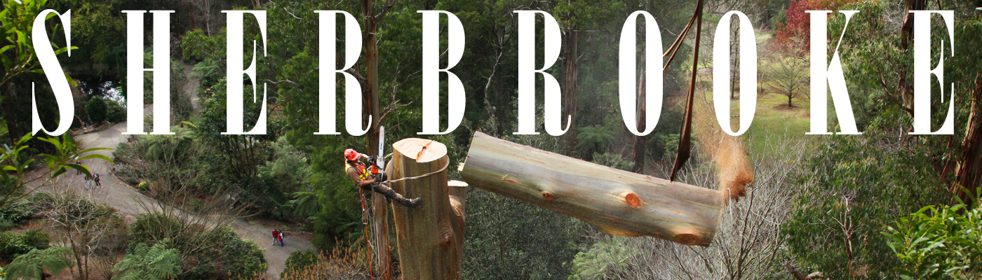 Sherbrooke Tree Service